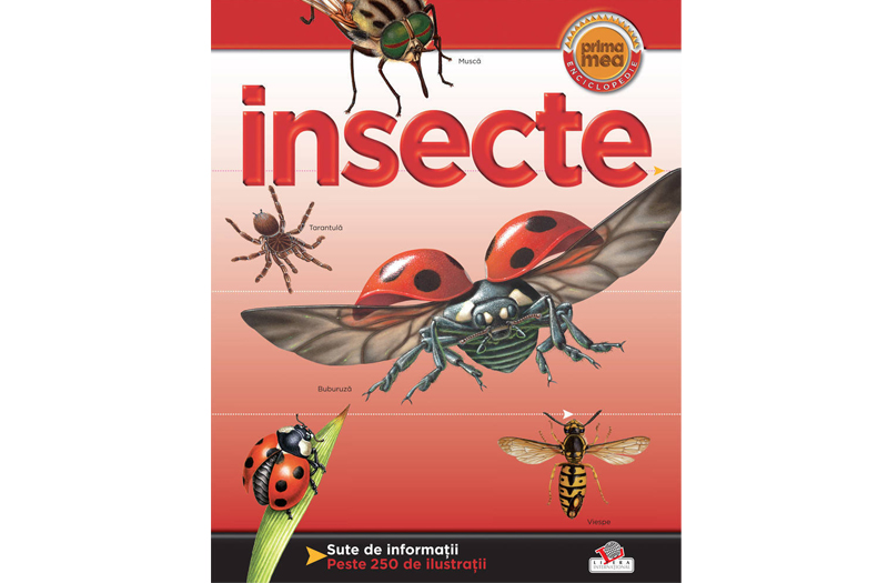 insecte-prima-mea-enciclopedie
